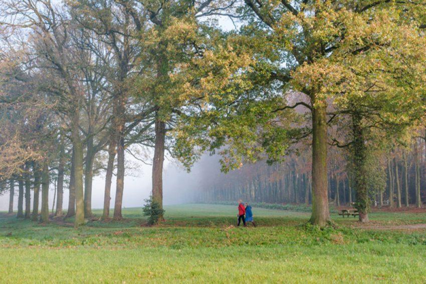 Natura 2000: ontwerp-Beheerplannen Noord-Brabant ter inzage