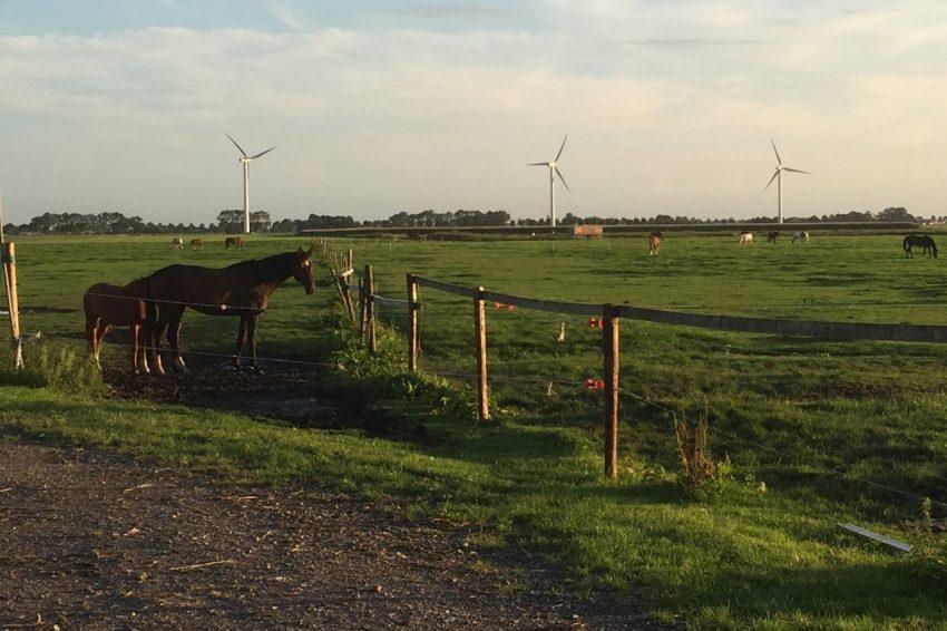 Ontwikkeling van windparken; integrale juridische ondersteuning op alle rechtsgebieden