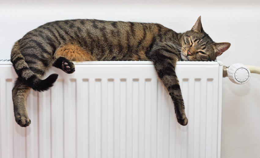 Herziening Warmtewet goed nieuws voor verhuurders