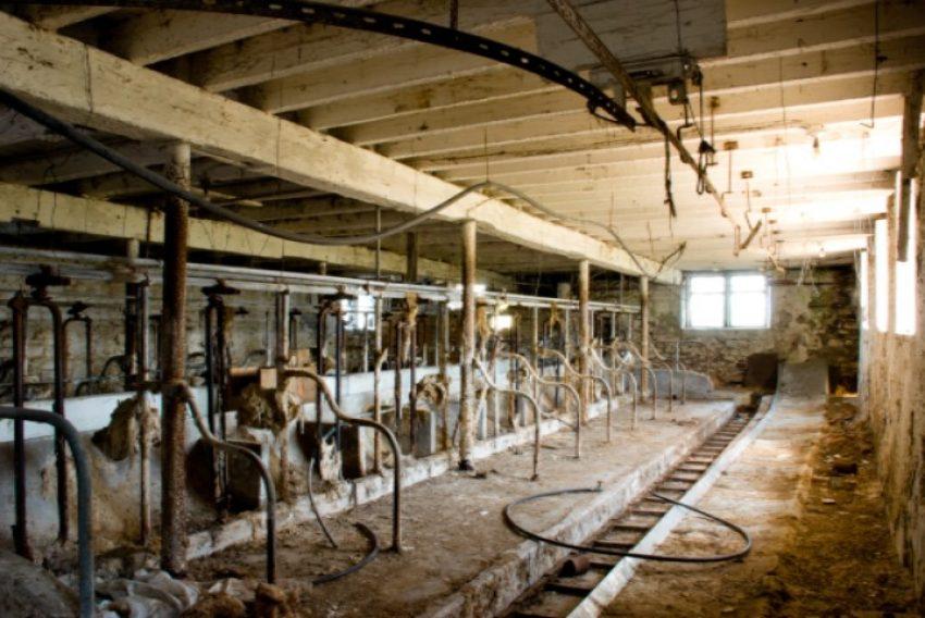 Externe saldering Nbw 1998: niet relevant of nog vee wordt gehouden