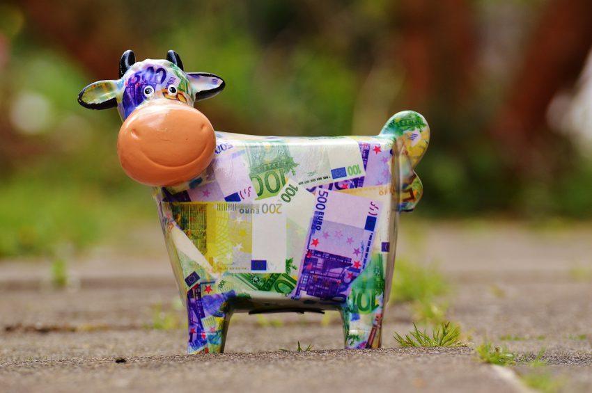 Wie procedeert om een koe, legt er een op toe