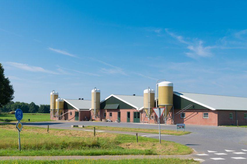 Let op: Noord-Brabant kondigt verscherpt toezicht (en zo nodig handhaving) alle veehouderijen aan!