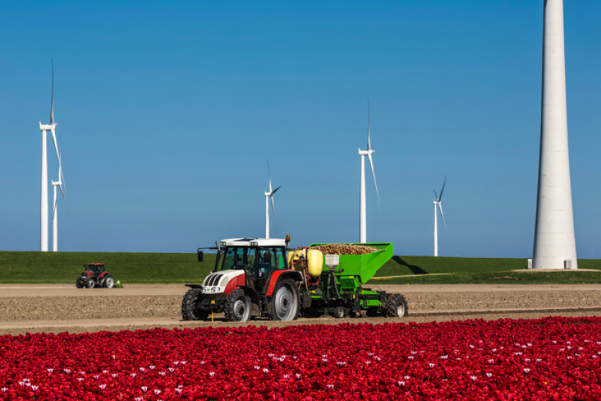 Kan de ruime Duitse stikstofnorm ook in Nederland?