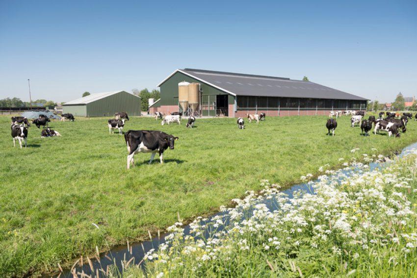 Agrarische familiebedrijven en voorkeursrechten bij verkoop aan derden