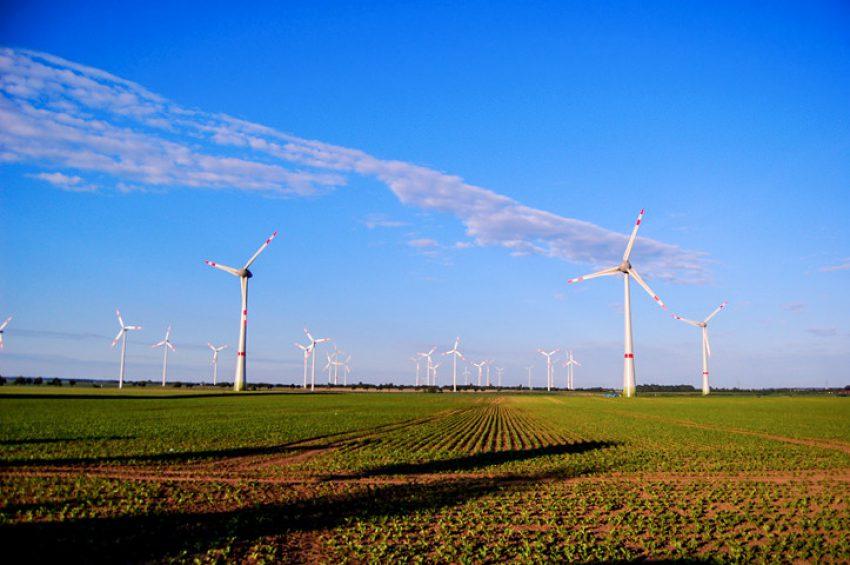 Afbeelding voor Gedoogplichtbeschikking: aanleg van een windpark