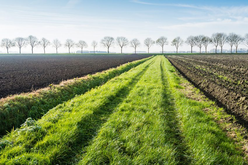 Zorgplicht van waterschappen bij beregening van landbouwgrond