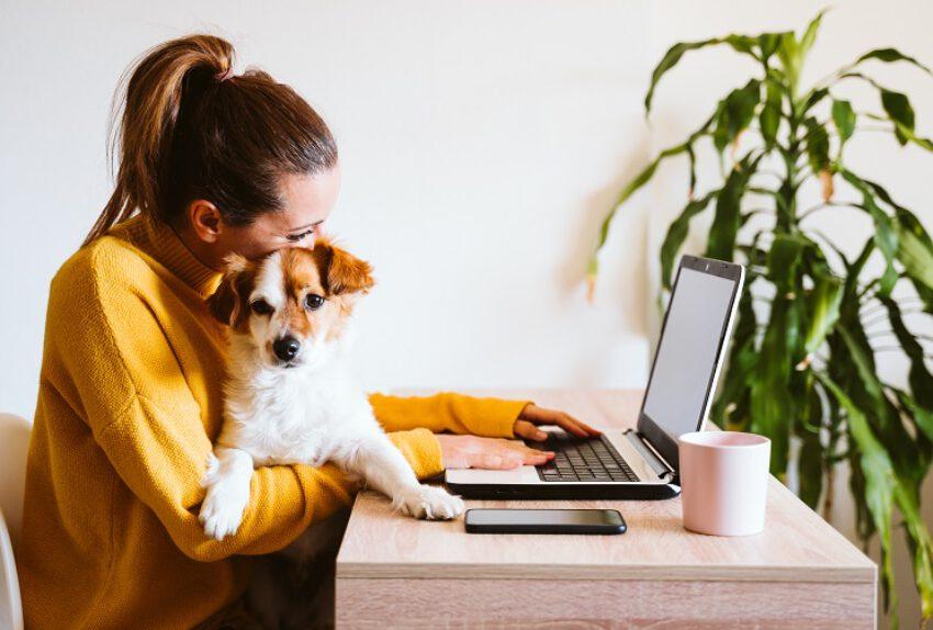Mag je thuiswerkend personeel controleren met 'gluursoftware'?