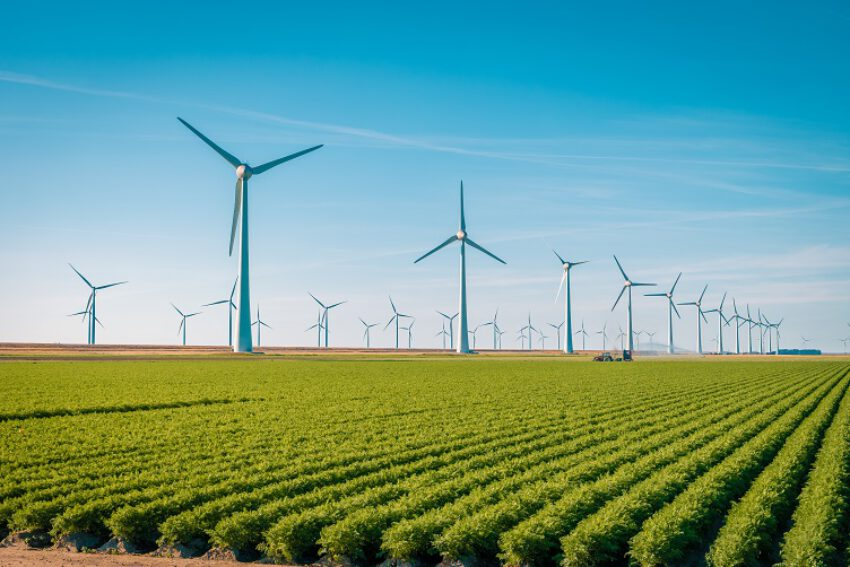Afbeelding voor Duurzame energie: maak heldere afspraken over beperkte rechten