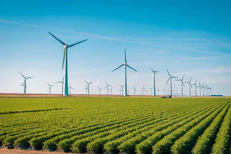 Offshore,Windmill,Farm,In,The,Ocean,Westermeerwind,Park,,,Windmills